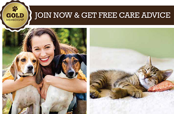 join-now-care
